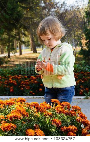 Small Child Around Flower Beds In The Park