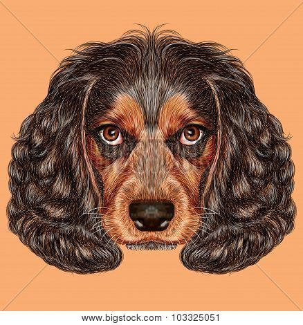 Illustrative Portrait of Spaniel Dog