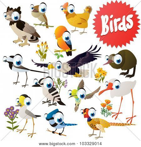 Adorable cartoon comic birds set: harpy, eagle, rock cock, nightingale, kiwi, woodpecker, jay, pheasant, hummingbird, ibis, crane