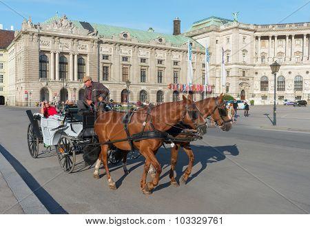 Horse Carriage In Vienna - Austria