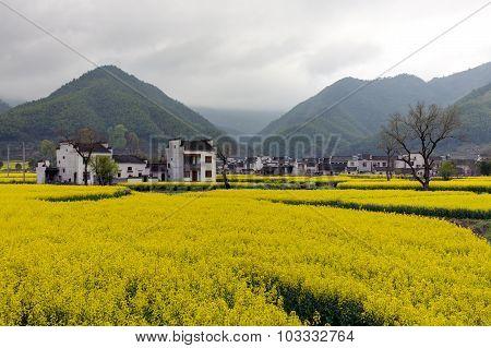 Beautiful rural landscape in China