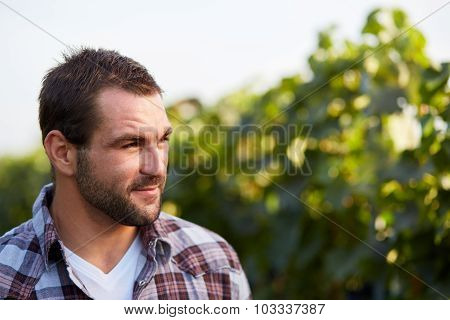 Portrait Of Winemaker