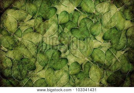background of green clover for design