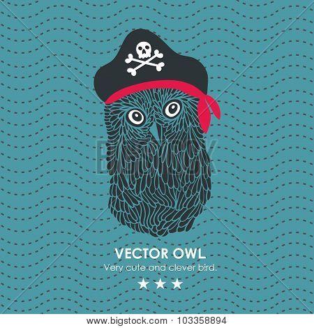 Captain pirate owl.