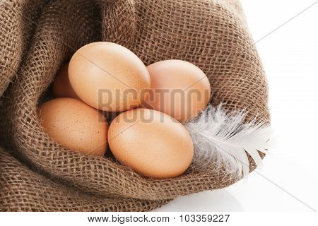 Organic Chicken Eggs.