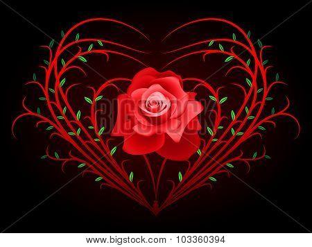 Bush And Rose
