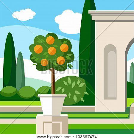 Garden, Park, Orange Tree, Co...