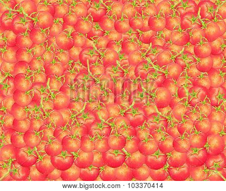 Texture From Red And Ripe Tomatoes