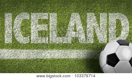 Iceland Ball in a Soccer field