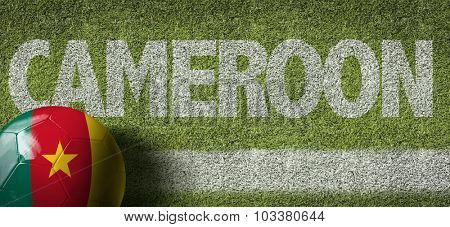 Cameroon Ball in a Soccer field