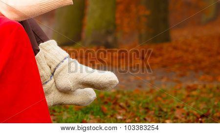 Autumn Fashion. Female Legs In Warm Socks Outdoor