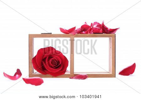 Wood Shelf Decorated With Red Rose Flowers Isolated On White Background
