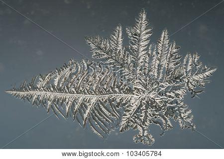 Winter Frost Pattern On Window