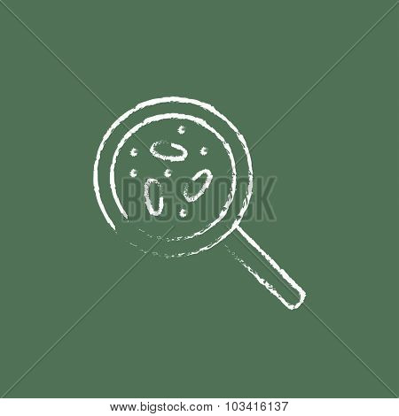 Microorganisms under magnifier hand drawn in chalk on a blackboard vector white icon isolated on a green background.
