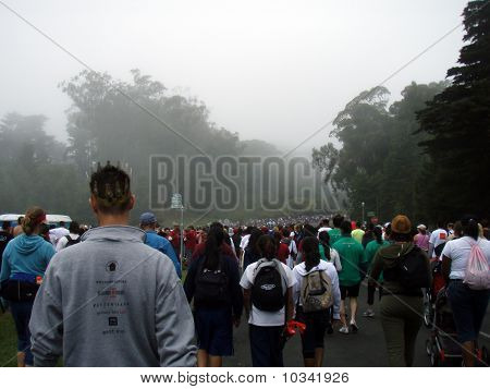 Ong Line Of People Participating To The Aids Walk 2007 Walking Down Into Golden Gate Park On A Foggy