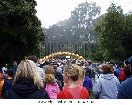 Long Line Of People Participating To The Aids Walk 2007 Walking Down Into Golden Gate Park