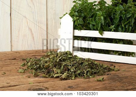 Fresh And Dry Spearmint On Wooden Bench