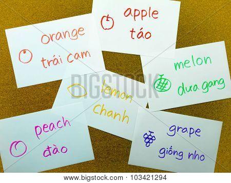 Language Flash Cards; Vietnamese
