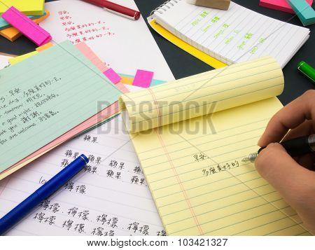 Writing New Language; Mandalin