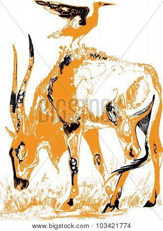 Orange antelope