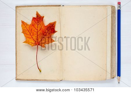 Autumn Concept With Book And Fall Leaf