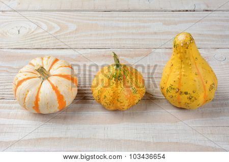 Closeup of three decorative gourds on a rustic wood table. Autumn still life.