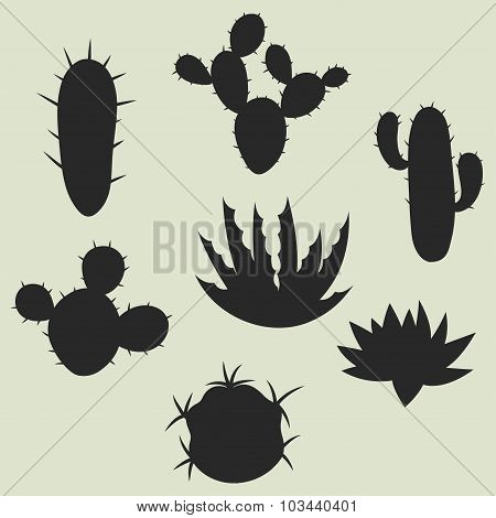 Collection of stylized cactuses and plants. Natural illustration