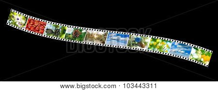 Nature Photo On The Photo Strip On A Black Background