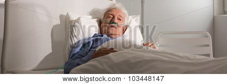 Elder Man In Bed