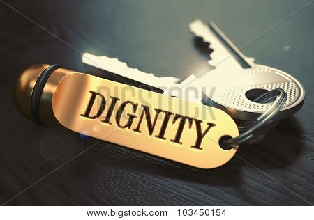 Dignity Concept. Keys with Golden Keyring.