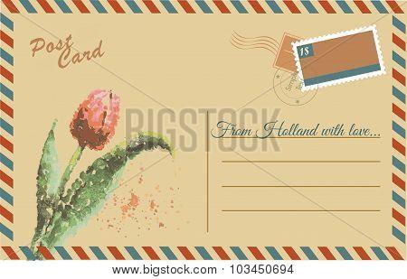 Vintage Postcard With Tulip