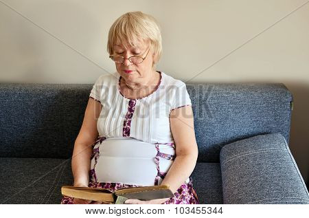 Elderly Woman Reading A Book Sitting On The Couch Horizontal