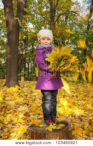 Child With Yellow Leaves, A Bouquet Of Yellow Leaves, Falling Leaf