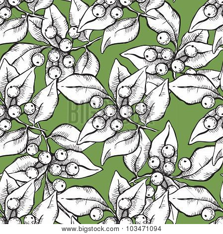 Vector Seamless Hand Draw Pattern With Ink Mistletoe Illustation