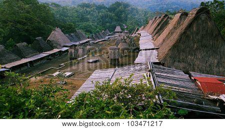 Village Bena