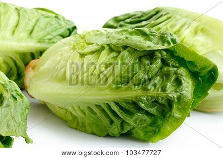 Gem lettuce.