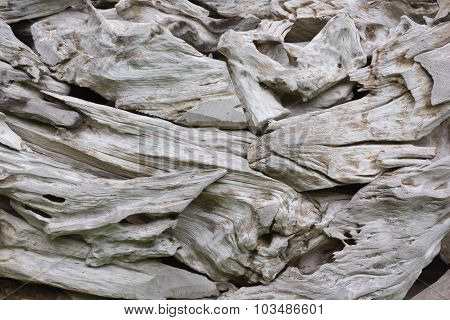 Closeup Of Some Driftwood Roots At The Park