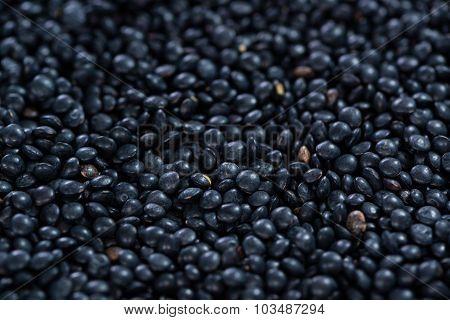 Black Lentils (food Background)
