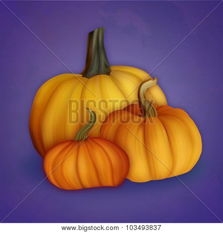 Autumn Illustration With Compositions Of The Three Pumpkins On Indigo Backdrop.  Seasonal Harvest.