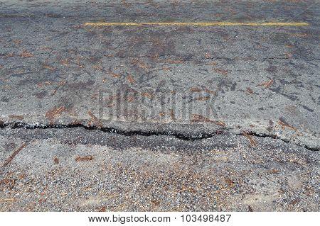 Crack Old Asphalt Road