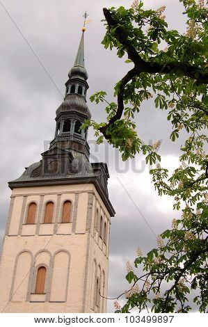 Church Of St Olaf - Oleviste. Tallinn, Estonia