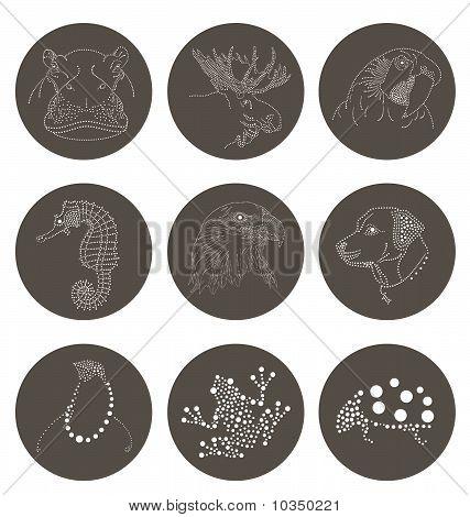Animal Dots Circle 3