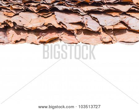 Roof Made Of Dried Leaves