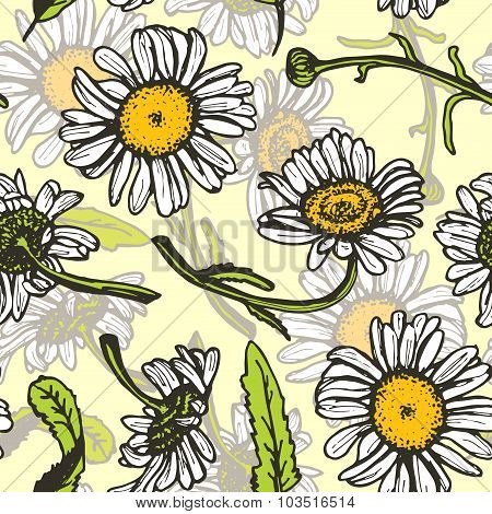 Beautiful vintage background with white daisies seamless patern on yellow background. Vector