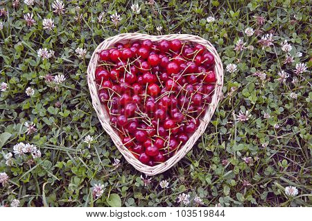 Ripe Cherries In Heartshaped Woven Basket On Lawn