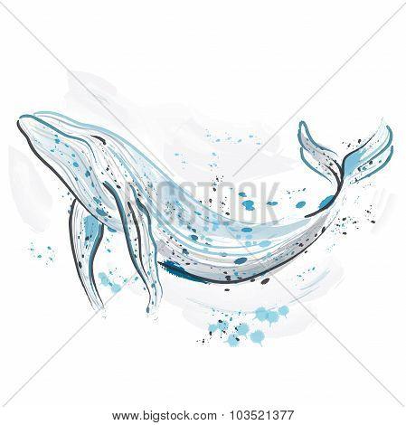 Whale. Retro hand drawn vector illustration.Card, print, t-shirt, postcard, poster.
