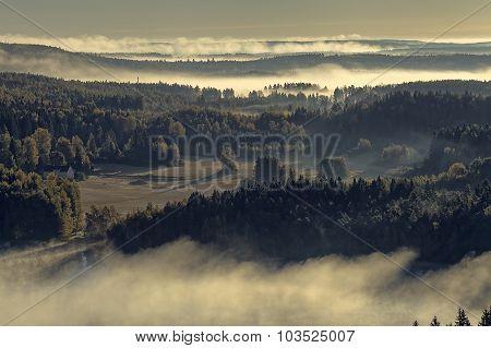 Foggy Nature Reserve Park View
