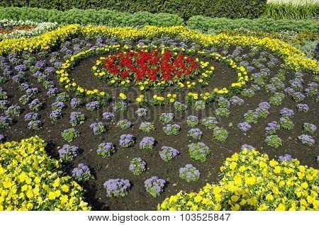 Freshly Planted Ornamental Flowerbed