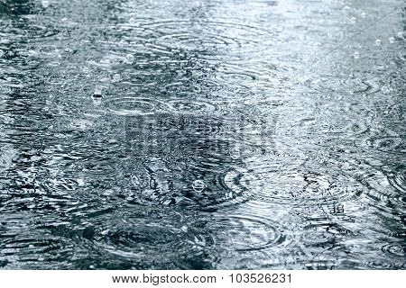 Raindrops Ripples On A Water Surface