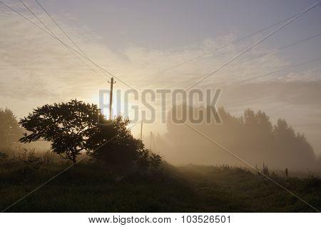Sun Rising Through The Fog On Rural Landscape